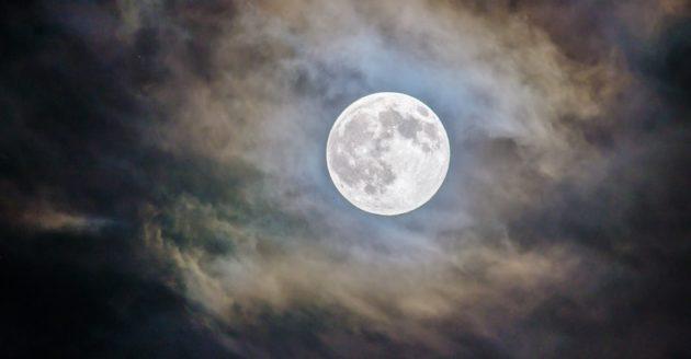 今夜は蠍座満月で【変容進化】のときの写真