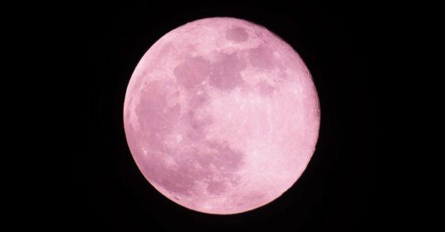今夜は満月「ストロベリームーン」の写真